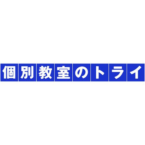 個別教室のトライ 越谷駅前校